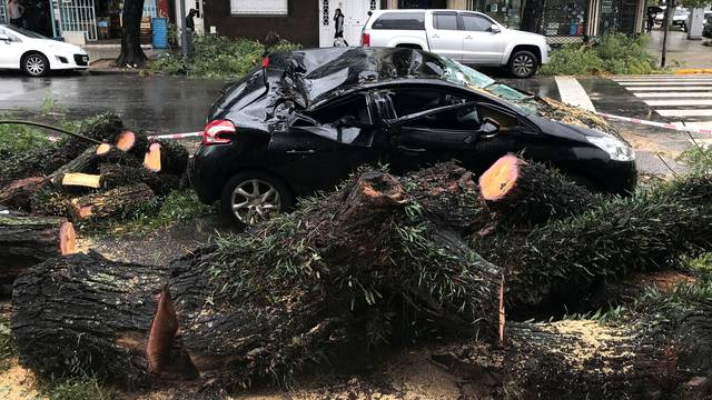 A car that was damaged by a tree during stormy weather is seen in Buenos Aires