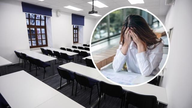 Studenti se žale: Neki profesori objave materijale i ne predaju...