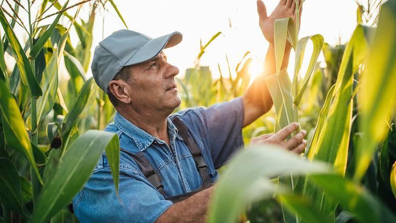 Poljoprivrednici požurite: još danas možete ugovoriti super-napredno osiguranje od suše