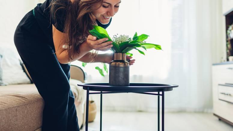 Zbog ovih aromatičnih biljki vaš dom će mirisati božanstveno