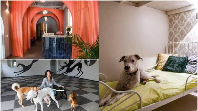 U Zagrebu otvoren hotel za pse, a cijena noćenja je do 470 kuna