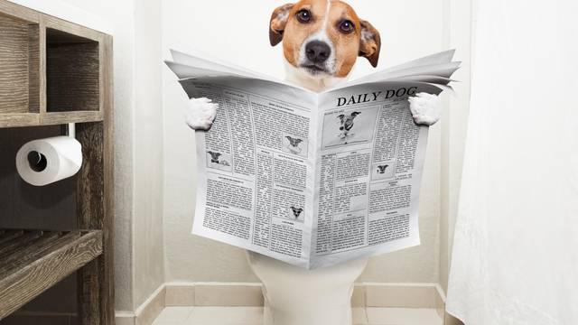 Ima li pravilan način stavljanja toaletnog papira - samo jedan