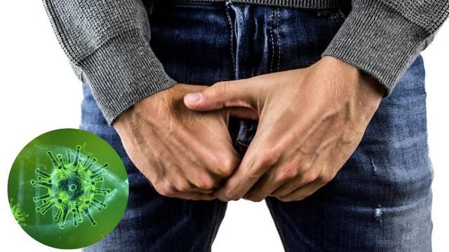 Doktori tvrde: 'Korona napada testise i utječe na plodnost...'