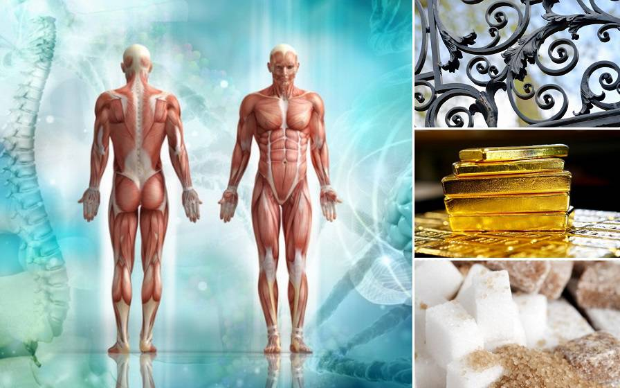 U ljudskom tijelu ima ugljika za tisuću olovaka, a u kosi i zlata