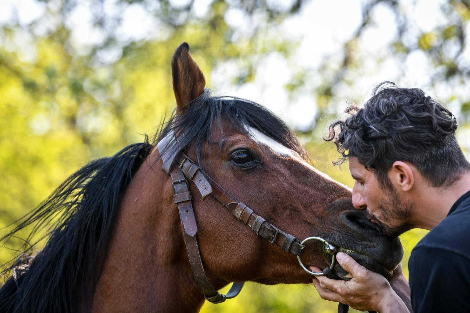 Dušan i Boris sve su bliže cilju: 'Mislim da nam se i konji smiju'