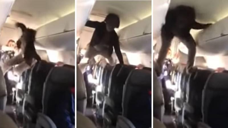'Ovo je kao egzorcizam!': Urlala i penjala se na stolce u avionu