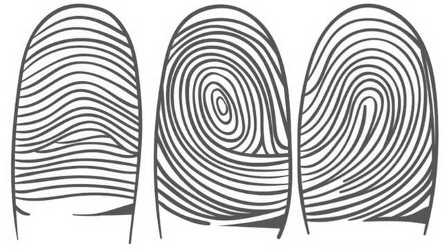 Petlja, krivulja ili vrtlog: Vijuge na kažiprstu otkrivaju karakter