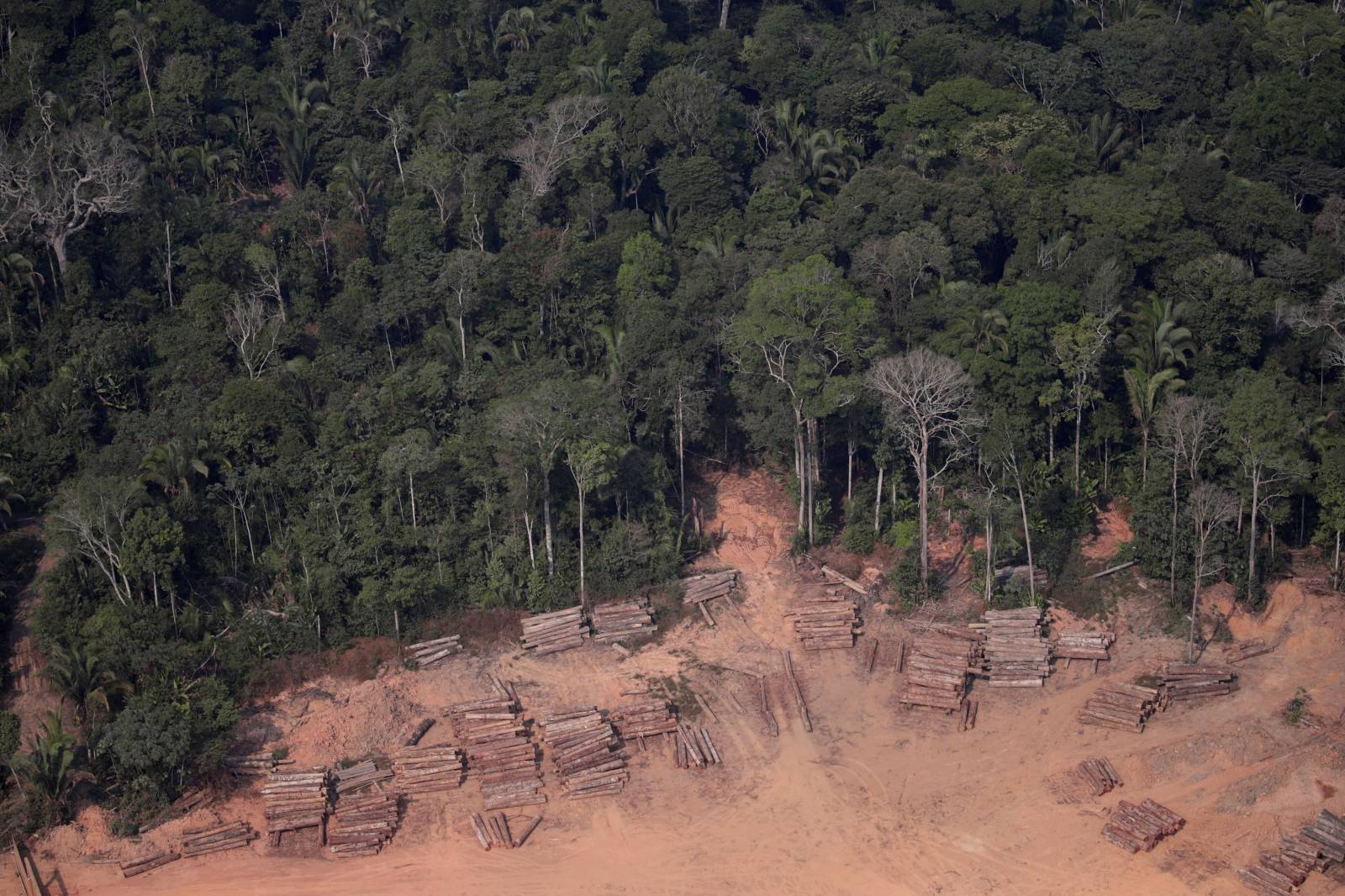 An aerial view of logs illegally cut from Amazon rainforest are seen in sawmills near Humaita