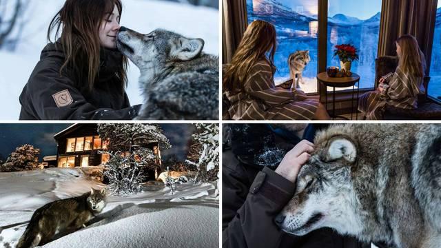 Mazite se s vukovima i gledate polarnu svjetlost u isto vrijeme