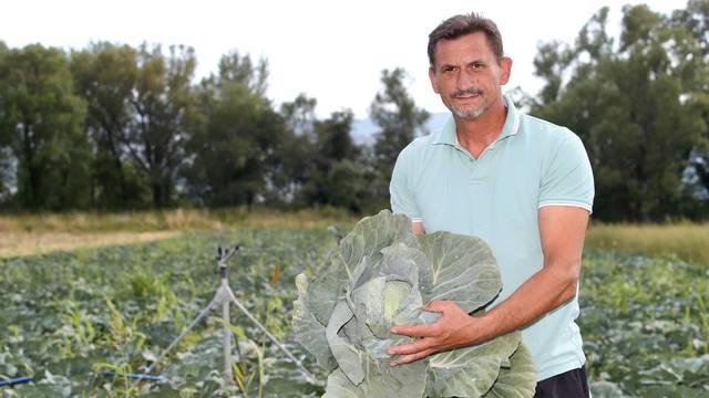 Od Imotskog do Zagreba kupus često poskupi i do četiri puta