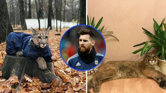 Puma Messi