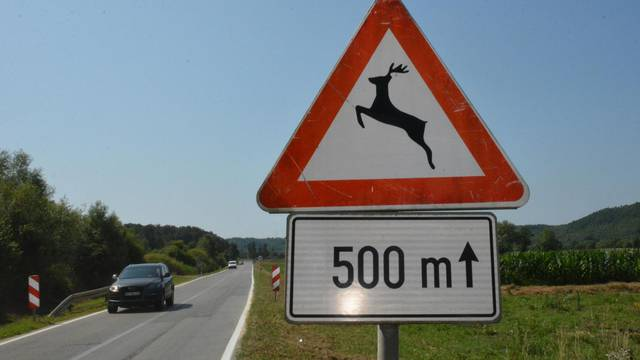 "Prometni znak ""divljač na cesti"" na prometnici Slavonski Brod - Požega"