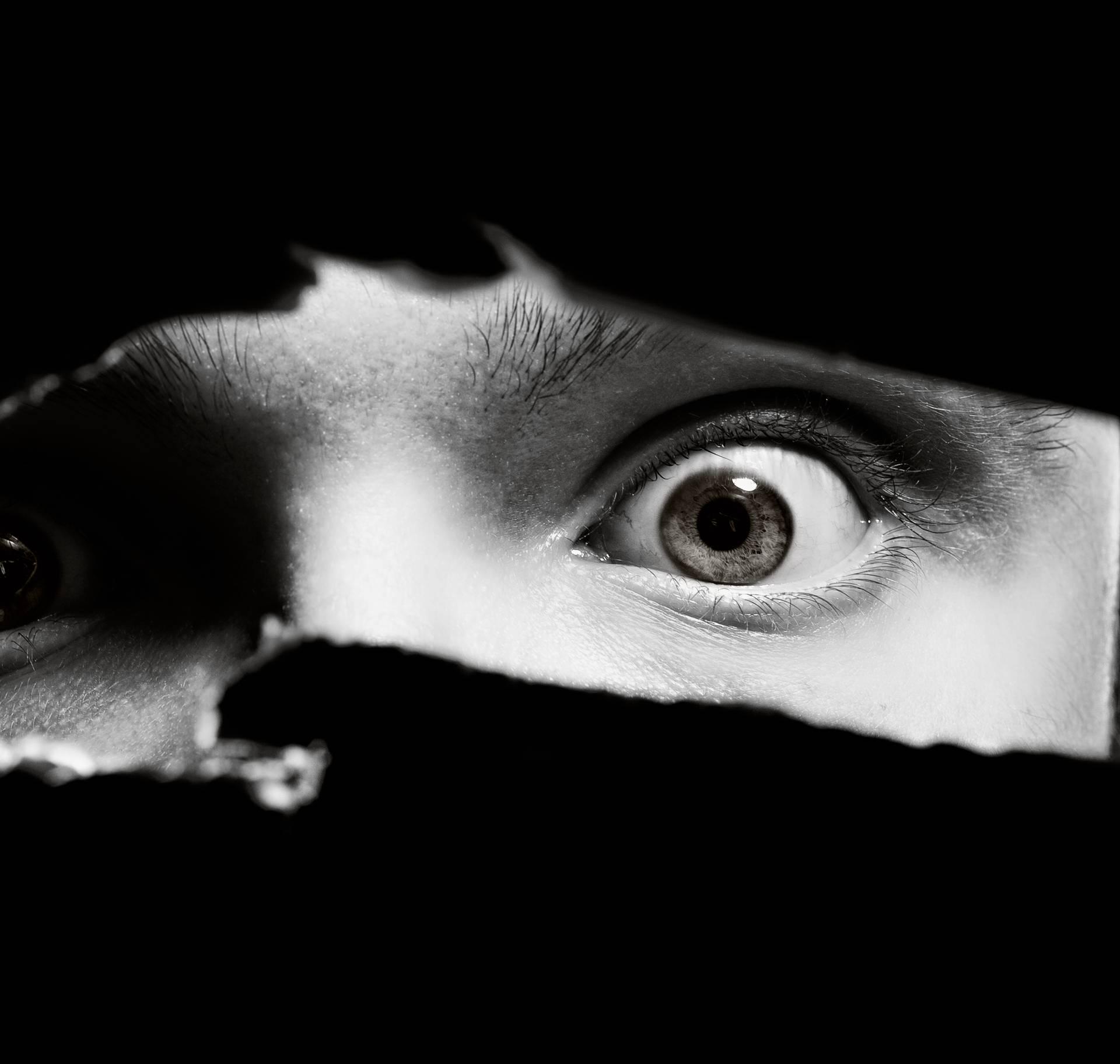 Čega se najviše bojite? Lavovi ignoriranja, a Jarci neuspjeha