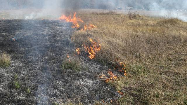 U danu čak 294 požara zbog paljenja korova, jedan poginuli