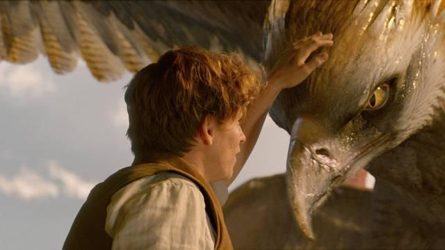 'Čudesne zvijeri i gdje ih naći' pokorile su Rotten Tomatoes