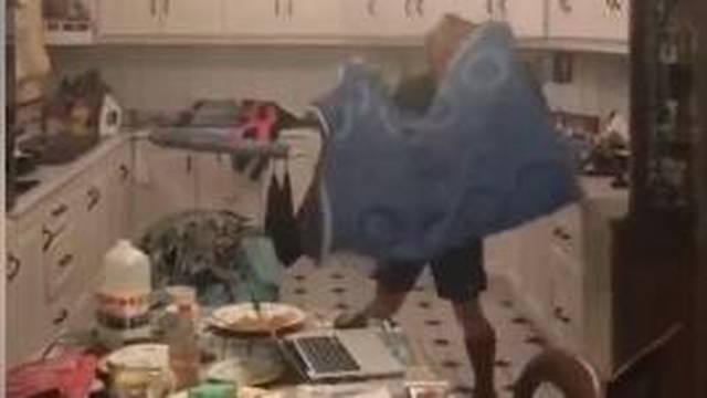 Šišmiš u kuhinji: Tata ga lovi, mama se sakrila, a sin snima...