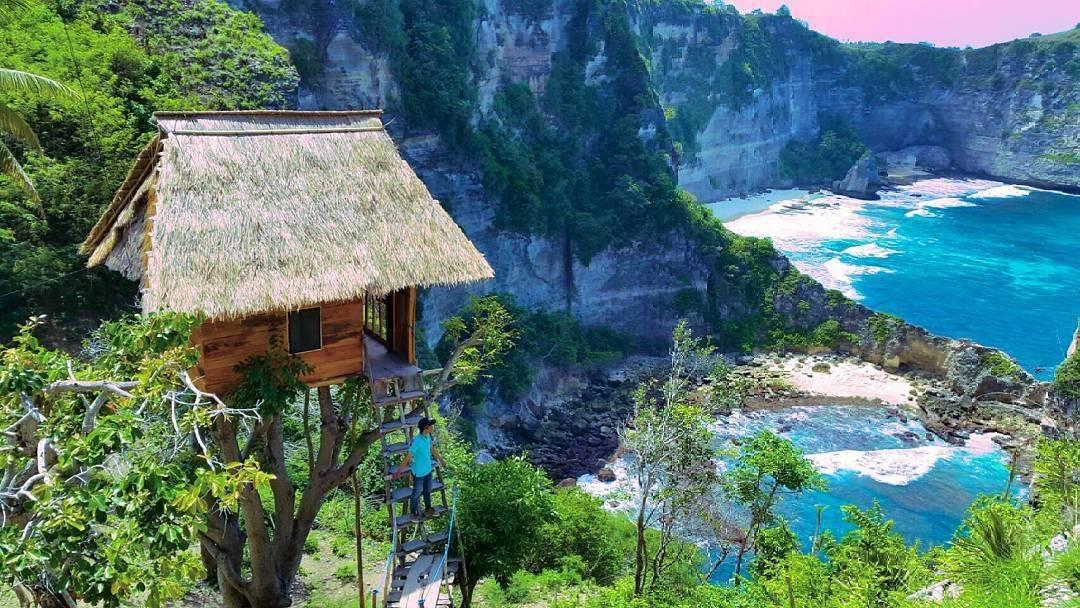 Indonezija: Bajkovitu kuću na drvetu iznajmljuju za 270 kuna