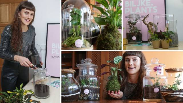 Mlada Vinkovčanka osmislila 'uradi sam' terarije: Traže se za poklone, ali i uredske prostore