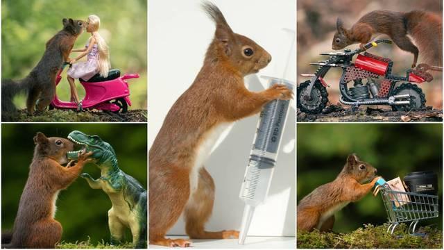 Njegova strast je fotografiranje vjeverica: 'Ponekad čekam i do četiri dana da ulovim pozu'
