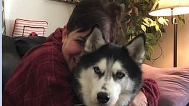 Spasila joj život: Kujica dvaput 'dijagnosticirala' tumor jajnika