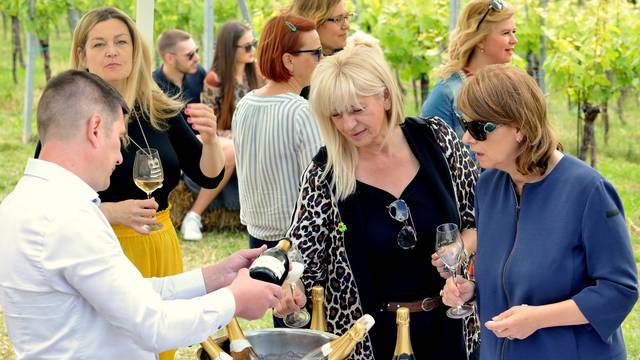 'Doručak u vinogradu' ukrasili su prizori zagorskih brega, sjajna hrana i domaći pjenušci...