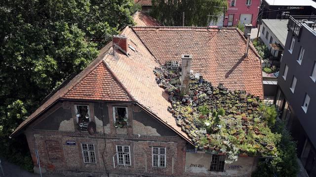 Zagreb: Vrt na krovu kuće u Ilici