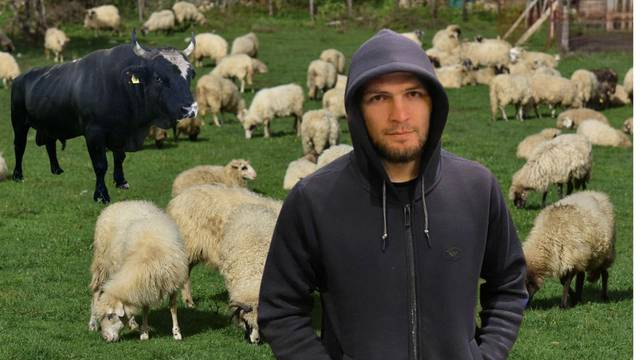 'Nemam više interes za MMA. Kupio sam ovce, imam i bikove, cilj mi je završiti fakultet...'