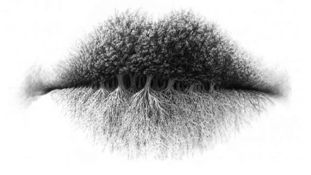 Pogledajte sliku: Jeste li prvo uočili usne, stabla ili korijenje?