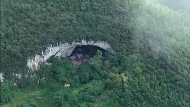 Usred šume krije se pećina, a u njoj živi cijela jedna zajednica
