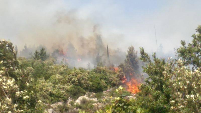 Požar potpomognut olujnim vjetrom gutao sve pred sobom
