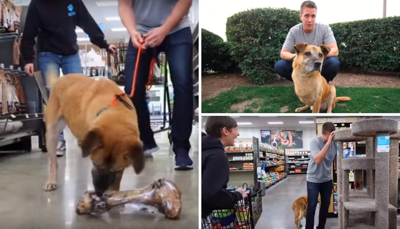 Napuštenom psu kupio sve što je dotaknuo i pronašao mu dom