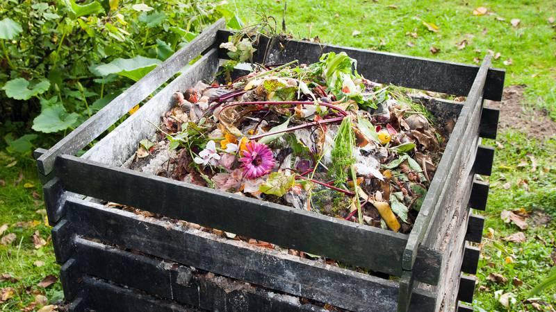 Napravite vlastiti kompost kod kuće za vrt: Topla metoda je brža, a kod hladnije priroda radi