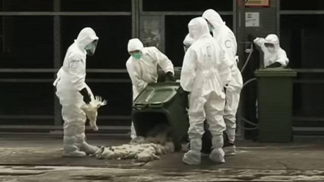 Pandemija je riječ godine na engleskom i njemačkom jeziku