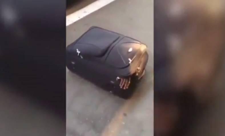 Kako je to uspio? Ugurao se u kovčeg pa putovao u Švicarsku