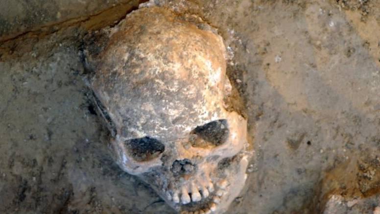 Više od 600 lubanja pronađeno kod crkve sv. Frane u Šibeniku