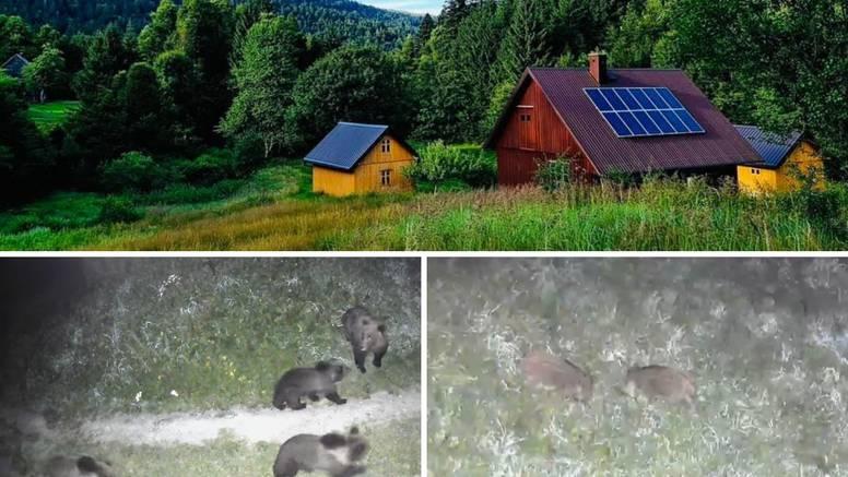 Gorski kotar: 'Medvjedi mi žive u dvorištu, jednom sam umalo stao na jednog koji je spavao'