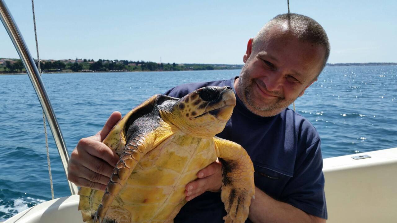 Vratili ju u more: Želvi su čak  40 minuta vadili udicu iz usta