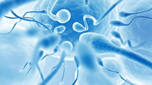 Za zdravije spermije jedu se skuša, srdele, nemasno meso...