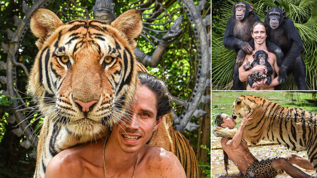 Moderni Tarzan: Tigar mu je ljubimac, a živi s čimpanzama