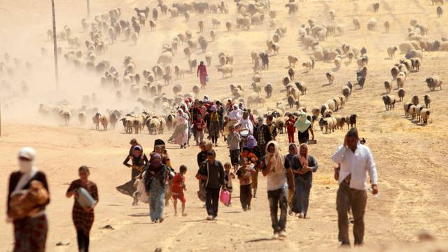 FILE PHOTO - Displaced people from minority Yazidi sect, fleeing violence from forces loyal to Islamic State in Sinjar town, walk towards Syrian border, on outskirts of Sinjar mountain