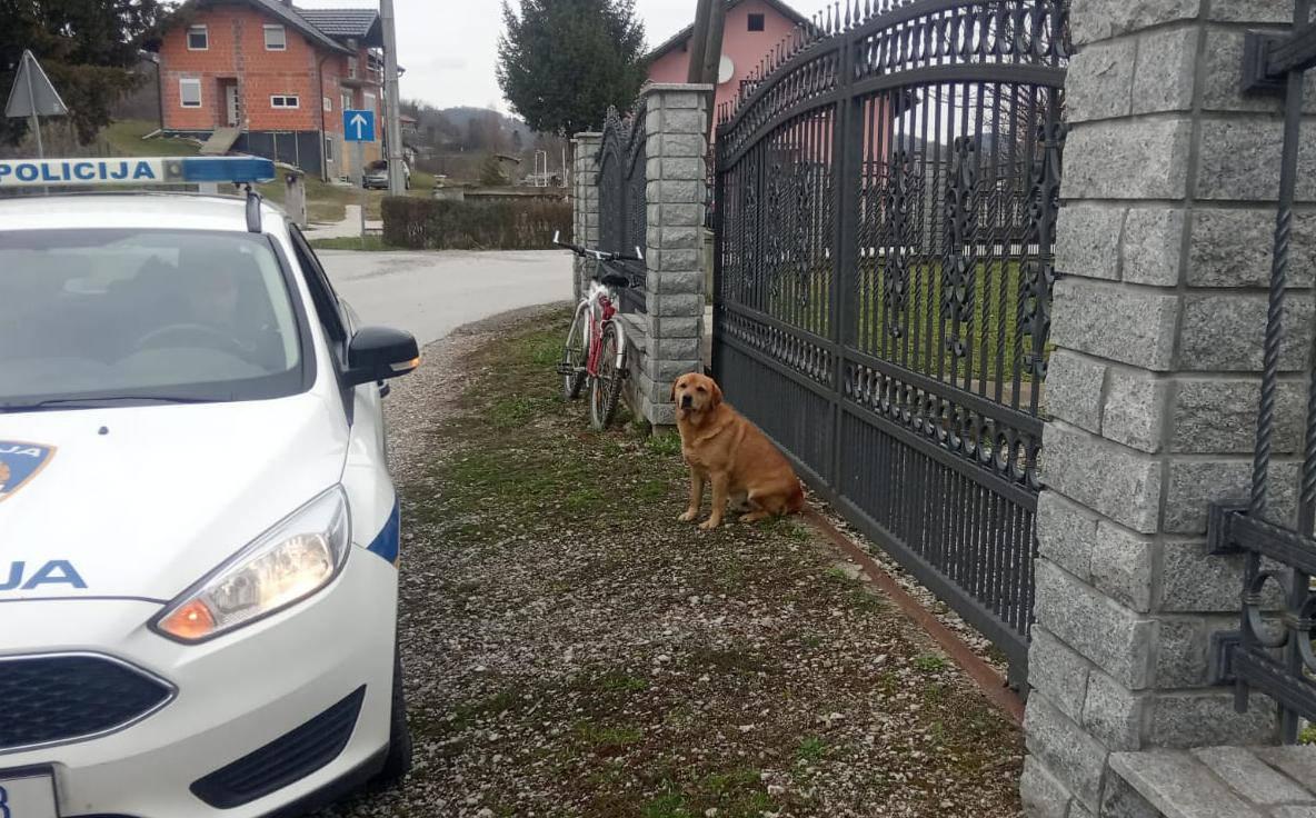 Pas ugrizao poštara: 'Nije nam pokazivao znakove agresije'