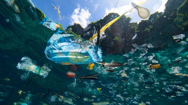 Do 2030. planiraju zaštititi 30 posto kopna i mora Mediterana