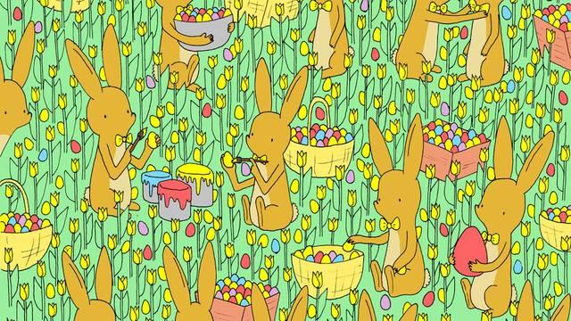 Možete li pronaći pile skriveno među zečevima i pisanicama?