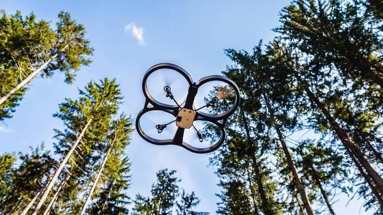 Pošumljavanje Grubišnog polja: To je prva sadnja šume dronom