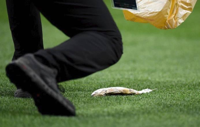 Na stadion u Moskvi s tribina na travu 'doletjela' mrtva riba