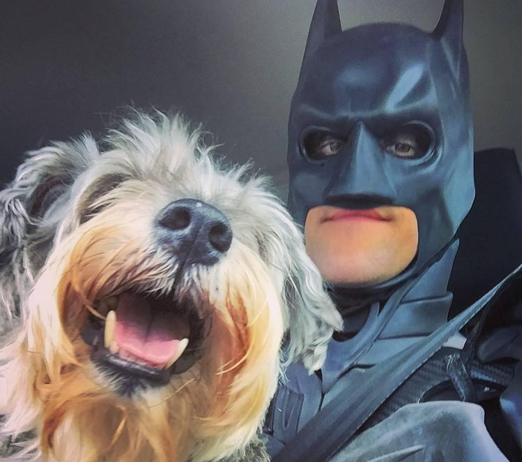 Volonter se odjeva u Batmana i spašava napuštene životinje