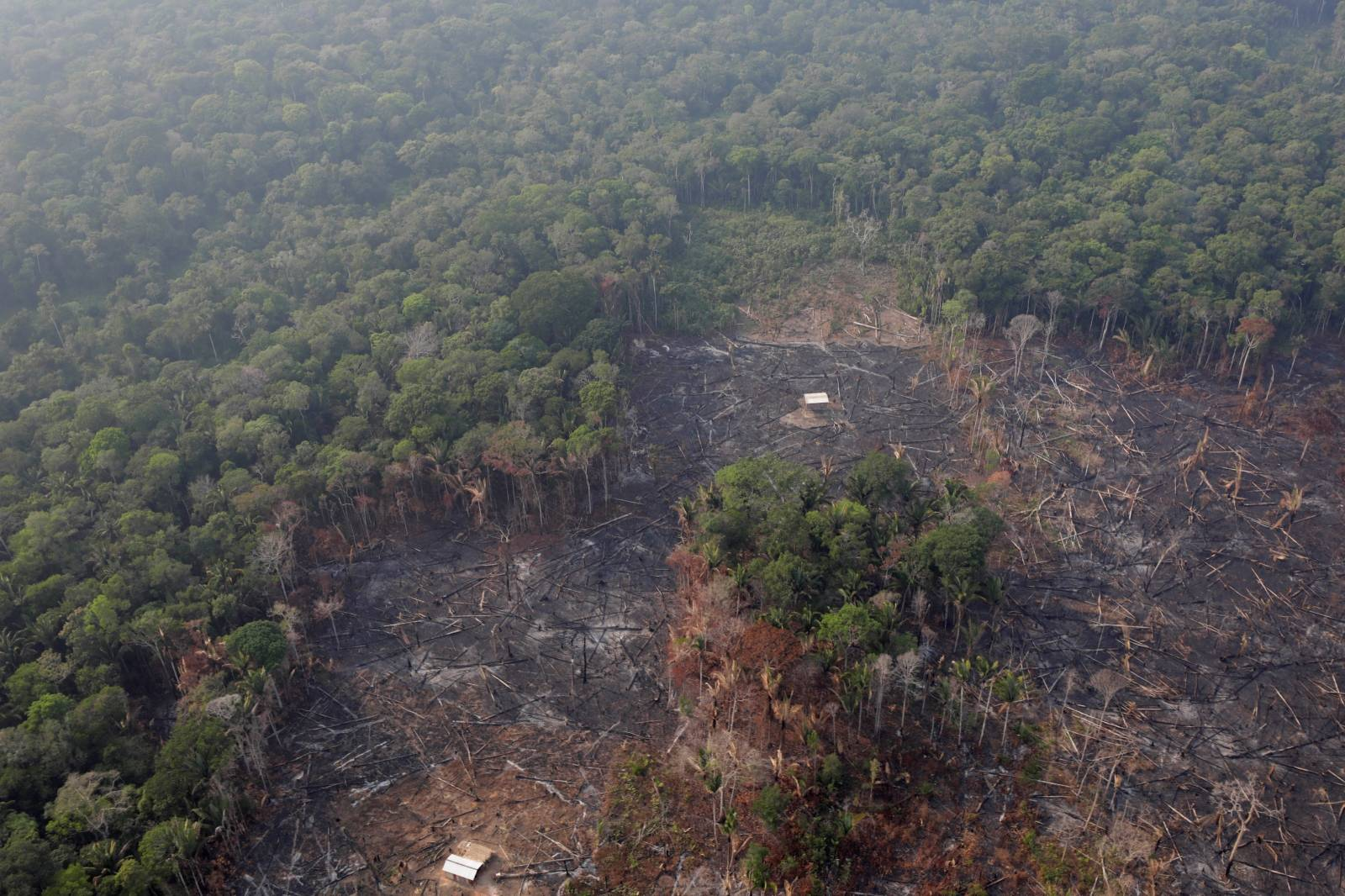 An aerial view of a deforested plot of the Amazon near Humaita