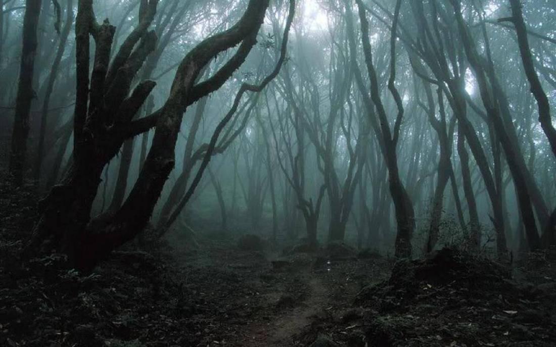 Pronašli su samo njihova tijela: Bezglavi leševi ostali misterij