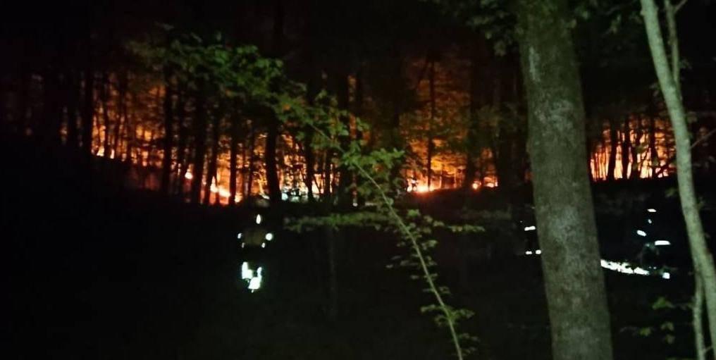 Vidjeli piromana kako podmeće požar, opet gorjelo kod Požege!
