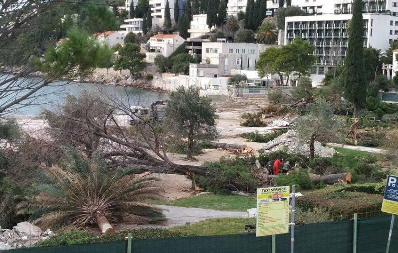 Masakr u uvali Lapad: Uređuju plažu pa odlučili posjeći stabla